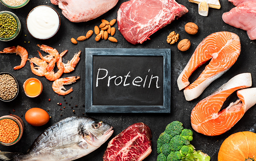 Macro e micronutrientes: proteínas e aminoácidos