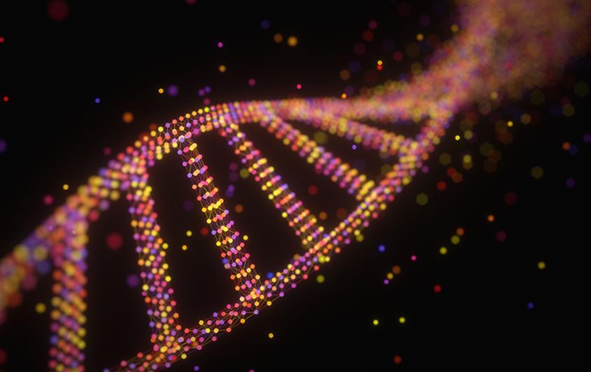 Bases moleculares da hereditariedade: genoma, DNA e genes