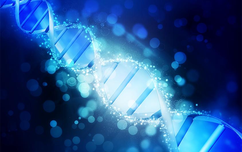 Genética do desenvolvimento