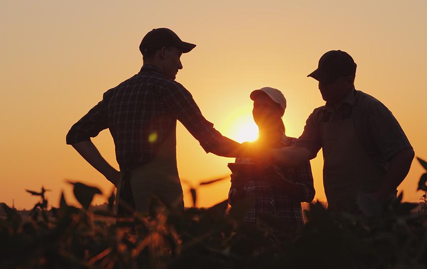 Projeto e Organização do Trabalho (Ênfase em agronegócio)